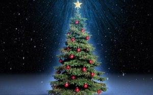 weihnachtsbaum-auswaehlen-tipps-ideen-dekoration-baumschmuck